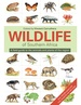 Natuurgids The wildlife of southern Africa | Struik publishers