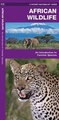 Natuurgids Africa Wildlife an introduction to familiar species | Waterford Press