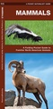 Natuurgids Mammals : An Introduction to Familiar North American Species | Waterford Press